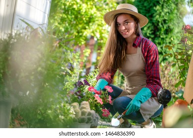 Portrait of gardener woman in gloves, hat and apron plants petunia flower on the flower bed in home garden. Gardening and floriculture. Flower care