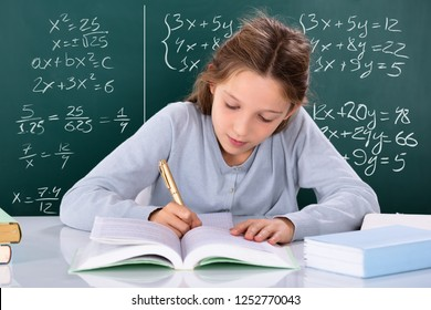 Portrait Of A Girl Doing Study In Front Of Green Chalkboard