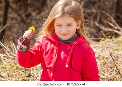 Portrait of a girl with white hair and blue eyes. Blond Child in a red jacket with a yellow flower in his hands and loose hair. In the background, dry yellow grass