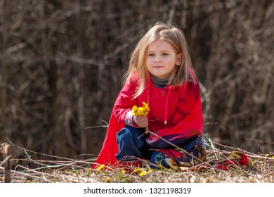 Portrait of a girl with white hair and blue eyes. Blond child in a red jacket with a yellow bouquet of flowers in his hands and loose hair. Baby sitting on a background of dry yellow grass