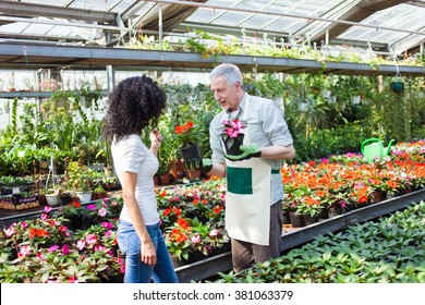 Portrait of a greenhouse worker talking to a customer