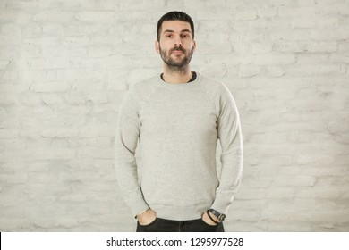 Portrait of handsome bearded man in a grey pullover