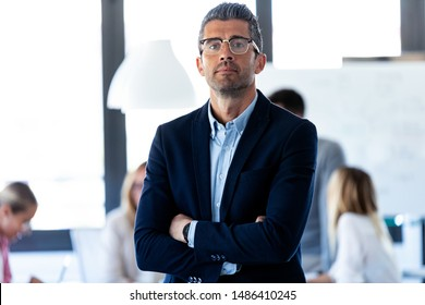 Portrait of handsome businessman is looking at camera while his colleagues are working on coworking place.