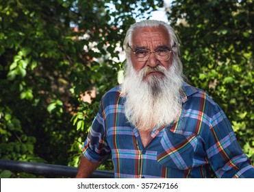 Portrait of handsome elderly aged man with magnificent gray-haired beard in summer park.