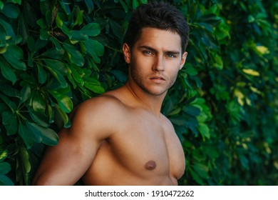 Portrait of handsome man at green background. Sexy shirtless male model in summer garden.