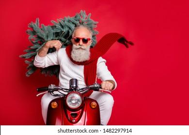 Portrait von gut aussehenden alten Hippisten mit Brillen, die Tannenbaum-Fahrrad tragen und eine weiße Jumper-Hose tragen, einzeln auf rotem Hintergrund