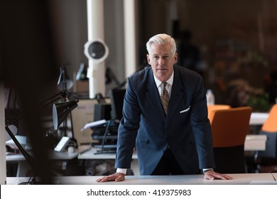 portrait of handsome senior business man with grey hait at modern bright office interior