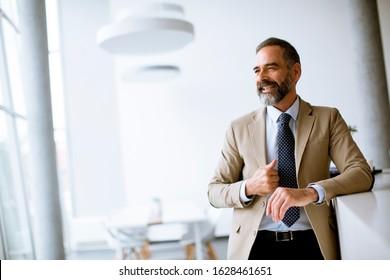 Portrait of handsome senior businessman in the office