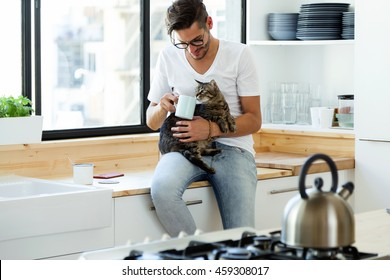 Portrait of handsome young man playing with cat in the kitchen.