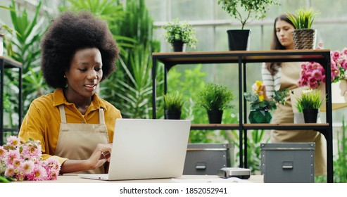 Portrait of happy African American woman florist typing on laptop in good mood and talking to colleague at flower shop. Caucasian female chatting with boss at work while watering flowers