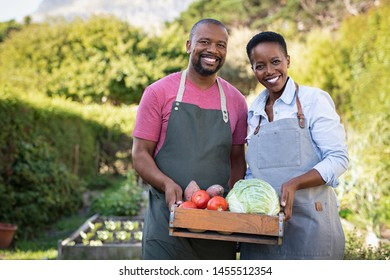 Portrait of happy black farmer couple holding a crate of bio vegetables in the farm. Smiling african man and mature woman showing box of harvested vegetables and looking at camera.