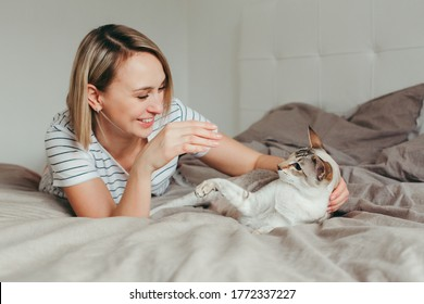 Portrait of happy Caucasian laughing smiling blonde woman lying on bed in bedroom at home and playing with oriental point-colored cat. Pet owner with domestic furry feline animal.