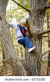 portrait of a happy child, climbing in a tree in a wood