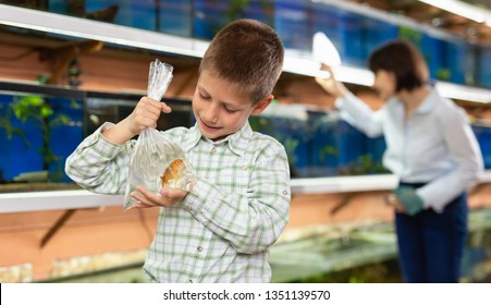 Portrait of happy cute preteen boy with goldfish for home aquarium in petshop