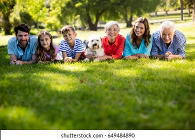 Portrait of happy family enjoying in park on sunny a day