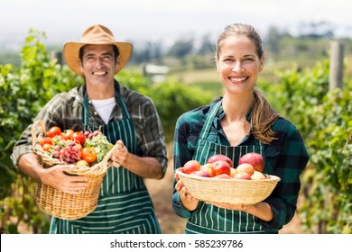 Portrait of happy farmer couple holding baskets of vegetables and fruits in the vineyard