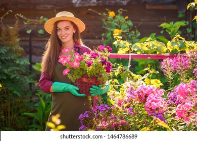 Portrait of happy joyful florist gardener woman in hat with flower pot of petunia in home garden. Gardening and floriculture