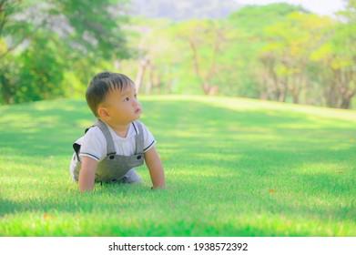Portrait of a happy little boy in the park,Little boy in grass field