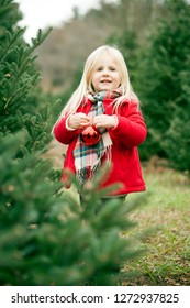 Portrait of happy little girl standing with bauble among fir trees. Girl hanging baubles on Christmas trees at farm
