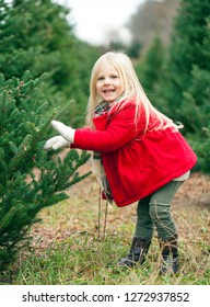 Portrait of happy little girl touching fir branches. Cute girl wearing red coat and scarf walking at farm in winter