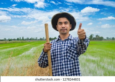 Portrait happy man is smiling. farmer thumb up standing in a shirt and looking at camera at rice field