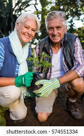 Portrait of happy mature gardeners holding potted plant at garden