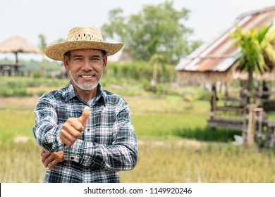 Portrait happy mature older man is smiling. Old senior farmer with white beard thumb up feeling confident. Elderly asian man standing in a shirt and looking at camera at rice field in sunny day.