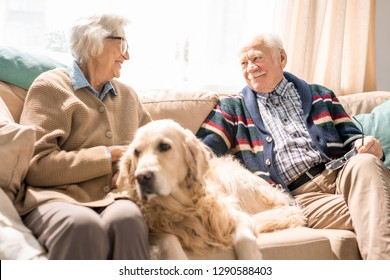 Portrait of happy senior couple with dog sitting on couch together and enjoying retirement