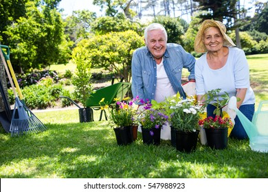 Portrait of happy senior couple gardening in the park on a sunny day