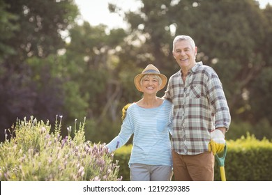 Portrait of happy senior couple standing in backyard