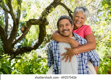 Portrait of happy senior man giving piggy bag to woman on a sunny day