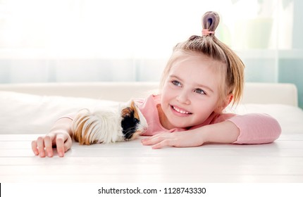 Portrait of happy smiling little girl hugging fluffy tricolor guinea pig. Adorable little child with pet