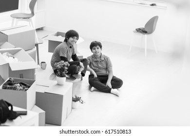 portrait of happy young boys with cardboard boxes around them in a new modern home