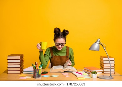 Portrait of her she attractive cheerful focused brainy woman nerd reading book learning grammar drinking beverage staying home isolated bright vivid shine vibrant yellow color background