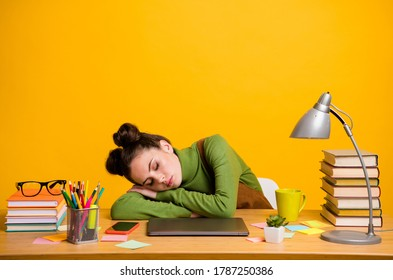 Portrait of her she attractive intellectual exhausted asleep woman geek programmer working remotely late night overwork overtime isolated bright vivid shine vibrant yellow color background