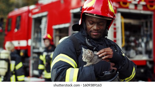 Portrait of heroic fireman in protective suit and red helmet holds saved cat in his arms, second firemans is out of focus near fire engine. Firefighter in fire fighting operation