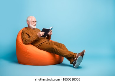 Portrait of his he nice attractive focused cheerful cheery wise smart clever bearded grey-haired man sitting in bag chair reading academic book isolated over blue pastel color background