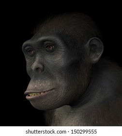 Portrait of a Homo Habilis, a species related to modern humans and the first hominid to use tools. Homo Habilis existed between 1.5 and 2 million years ago. 3d render with digital painting.