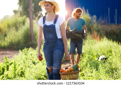Portrait of horticulturist young couple taking care of garden and collecting fresh vegetables in crate.