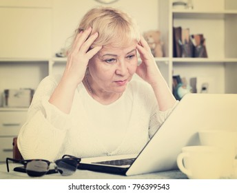 Portrait of an interested mature woman with a laptop at the table