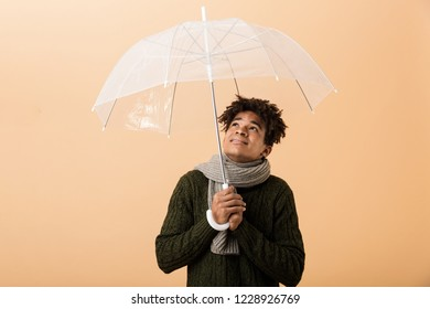 Portrait of joyous african american guy wearing sweater and scarf standing under umbrella isolated over beige background