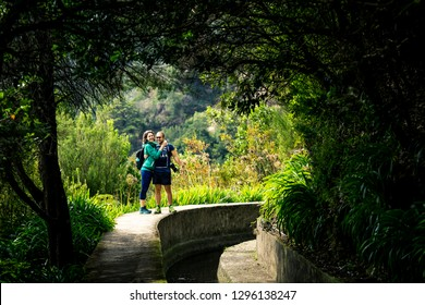 Portrait of just married couple walking by levana on Madeira island, up in mountains. Hiking by the trail among green, tropical and old forests. Portugal.