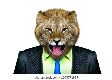 Portrait of a lion in a business suit, isolated on a white background