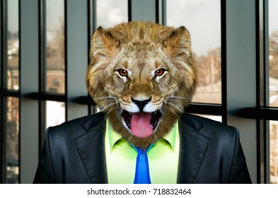 Portrait of a lion in a business suit in the office