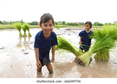 Portrait of a little Asian girls playing mud in rice plant field.