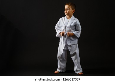 Portrait of little boy training karate isolated on gray background