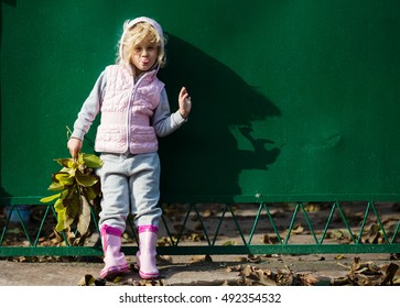 Portrait of little girl with autumn leaves