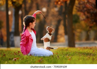 Portrait of a little girl on a background of blurred orange leaves in an autumnal sunny day. Little puppy jack russel terrier chasing baby.