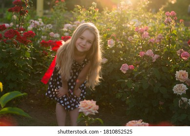 Portrait little girl in roses. Baby walk in the fall sun. Vacation. girl in the rose garden