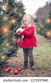Portrait of little girl standing with bauble in hands. Cute girl hanging decorations on fir tree at farm